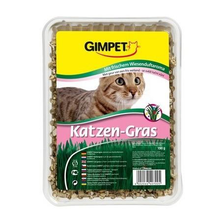 GIMPET Katzen Gras - trawa dla kota 100g