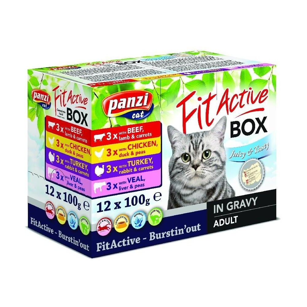 Fit Active Cat Box 12 x 100 g (różne smaki)